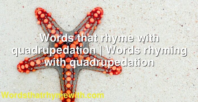 Words that rhyme with quadrupedation   Words rhyming with quadrupedation