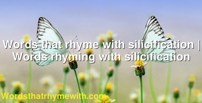 Words that rhyme with silicification | Words rhyming with silicification