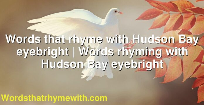 Words that rhyme with Hudson Bay eyebright | Words rhyming with Hudson Bay eyebright