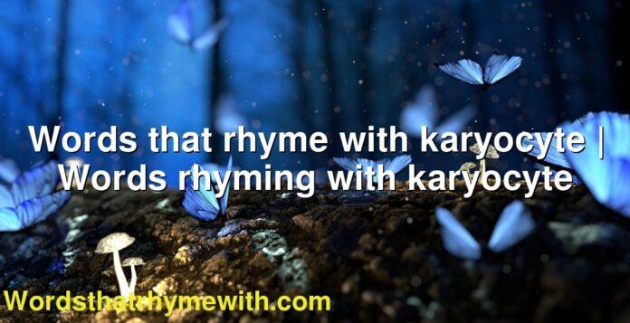 Words that rhyme with karyocyte | Words rhyming with karyocyte