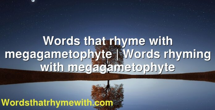 Words that rhyme with megagametophyte   Words rhyming with megagametophyte
